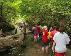 Campers walk through the creek during LHF Day Camp.