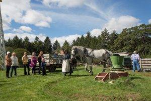 visitors look on as horse works at 1900 farm