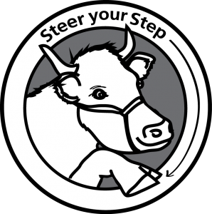 Steer your step logo