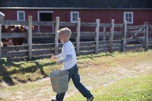 boy doing farm chores