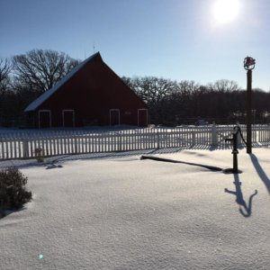 snow at 1900 Farm