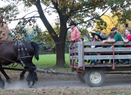 halloween guests on a horse-drawn wagon